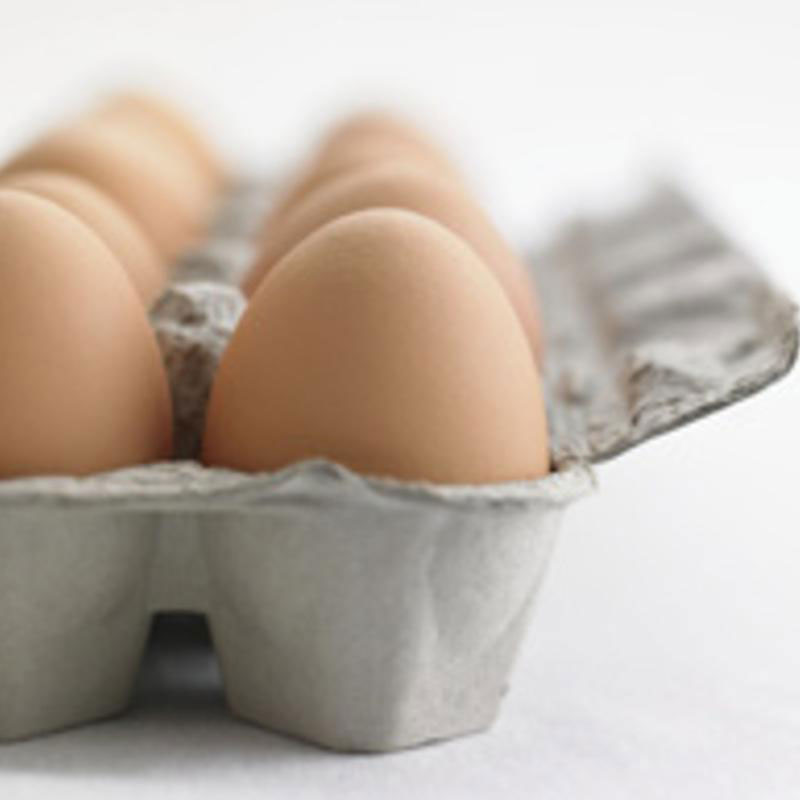 Eggs Pastured Non GMO Non Soy