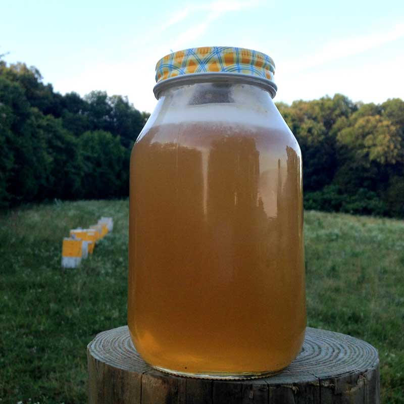 Honey - Raw Unfilitered - 12oz