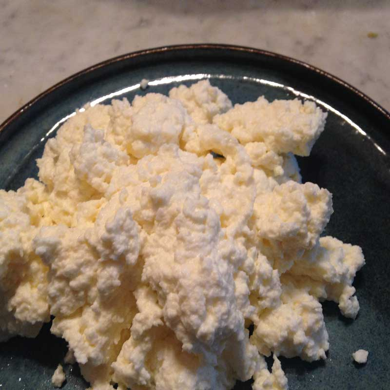 Dairy - Ricotta Cheese