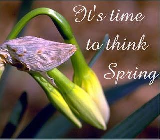 Organic Gardening: It's Time to Think Spring!