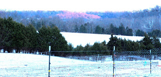 Winter Comes to the Farm – Finally!